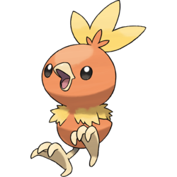 Torchic 6 IVs (Shiny)