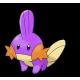 Mudkip 6IV (Shiny)