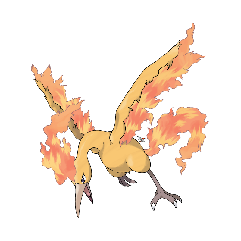 Pokemon Legendary Birds Images
