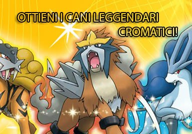 OTTIENI tutti e 3 i Cani leggendari Cromatici (Shiny) Entei, Suicune e Raikou